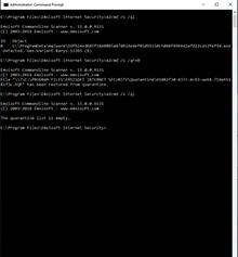 Screenshot CMD Quarantine